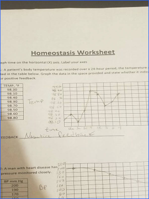 Homeostasis Worksheet me on the horizontal axis Label your axes A patients body temperature was