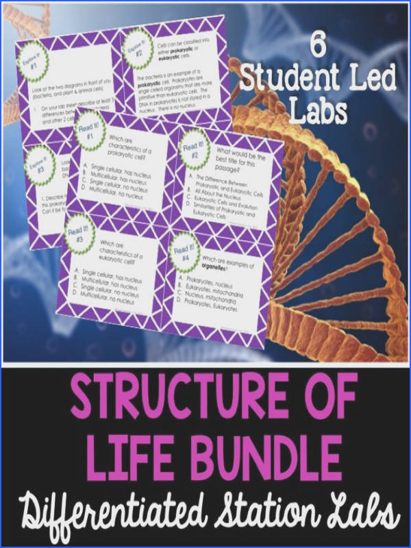 6 different student led labs that cover the structure of life in science Topics include