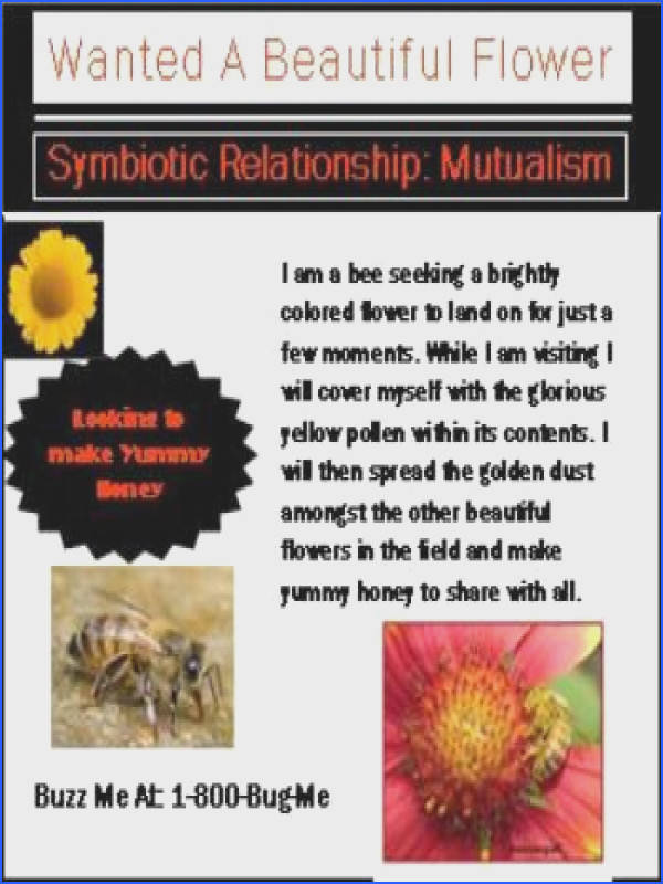 Symbiotic relationship want ad example Symbiotic relationship want ad example