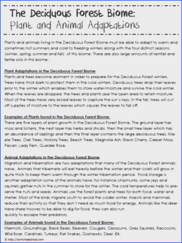 Taiga Biome Facts and Information Homeschool Science Pinterest